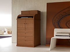 CATALOGUE  Molteni DRESSERS CARTEGGIO